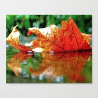 Autumn leaf reflected Canvas Print