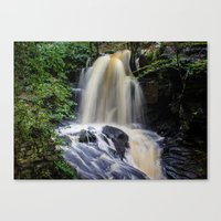 Full Flow Canvas Print