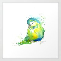 Budgie Series - IV Blue/… Art Print