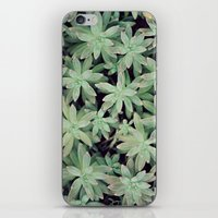 Succulent Abstract iPhone & iPod Skin