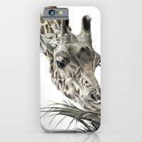 iPhone & iPod Case featuring Giraffe - A Long Munch by Beth Thompson