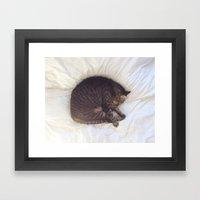 Furball Framed Art Print