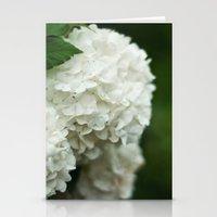 Snowball Bush Stationery Cards