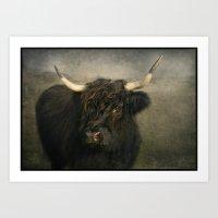 The Black Cow Art Print
