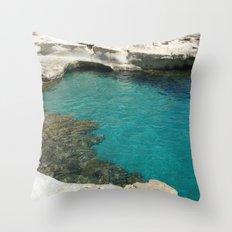 Shore Throw Pillow