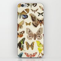 Collection iPhone & iPod Skin