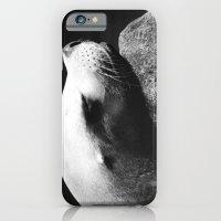 Seal 1 iPhone 6 Slim Case