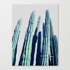 Cactus #society6 Decor #… Canvas Print