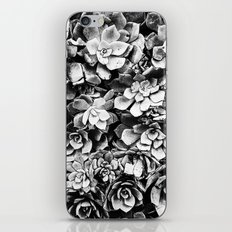 Black And White Plants iPhone & iPod Skin