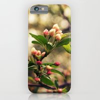 iPhone & iPod Case featuring Country Garden by Shannon Marie