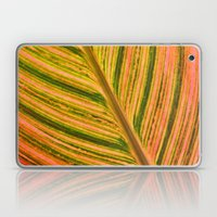 Tropical Leaf Laptop & iPad Skin