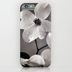 Dogwood iPhone 6 Slim Case