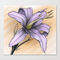 Flower Study 3 On Orange Canvas Print