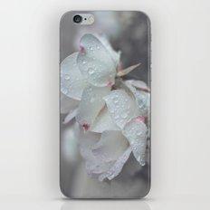 naivete iPhone & iPod Skin