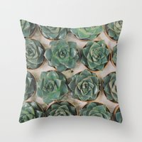 Succulent Collection Throw Pillow