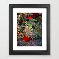 Domino Damselfish in Anemone Framed Art Print