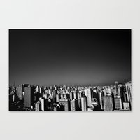 Lovely SP Canvas Print