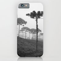 iPhone Cases featuring Araucaria Angustifolia by Julio O. Herrmann