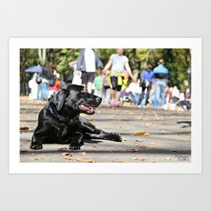 Dogs world Art Print