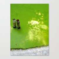 Slime & Light Canvas Print