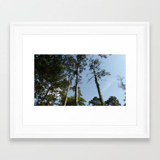 Skyward Bound Framed Art Print