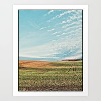 Sunlit Fields Art Print