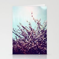 Holga Flowers II Stationery Cards