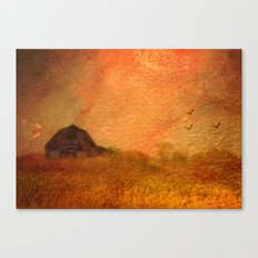 Amber Waves of Grain Canvas Print