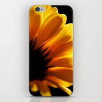 Dramatic Daisy. iPhone & iPod Skin