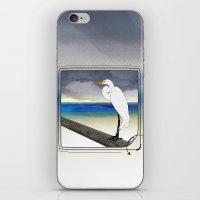American Great Egret iPhone & iPod Skin