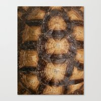 Shell Game Canvas Print