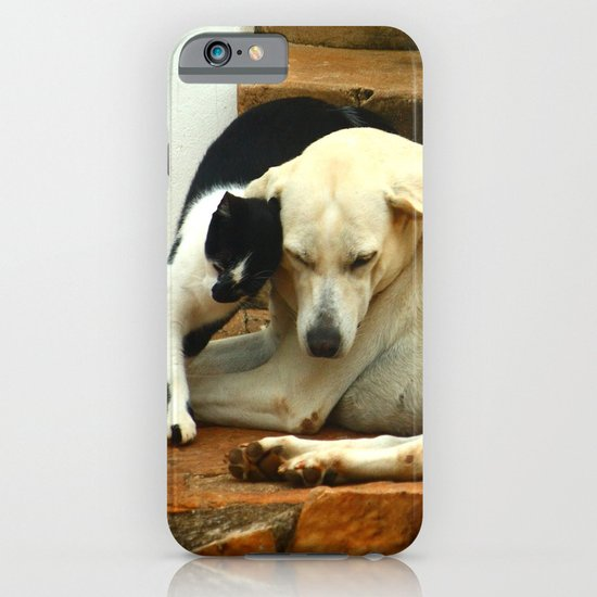 Like cats and dogs iPhone & iPod Case
