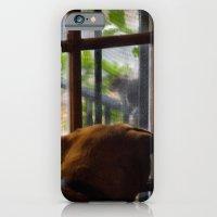 Her nemesis the squirrel tease iPhone 6 Slim Case
