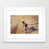 beachdog Framed Art Print