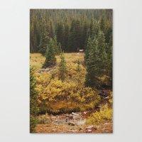 Rocky Mountain Creek Elk Canvas Print