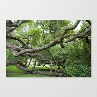 adapt or perish Canvas Print