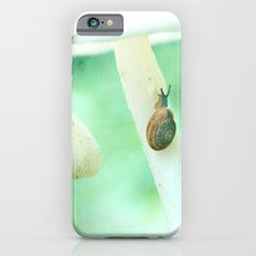 Snail Crossing iPhone 6 Slim Case