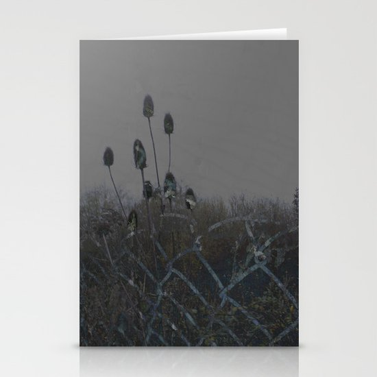TEASEL II Stationery Card