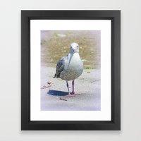 Sammy the Seagull Framed Art Print