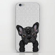 Black Frenchie 001 iPhone & iPod Skin