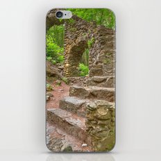 Forest Castle Ruins iPhone & iPod Skin