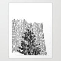 Cypress Art Print