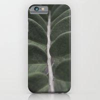 Money Plant iPhone 6 Slim Case