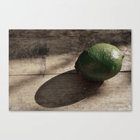 Still Life- Lime Canvas Print