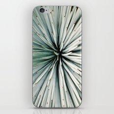 yucca iPhone & iPod Skin