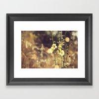 Summer Fields | 02 Framed Art Print