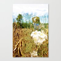 Fields Canvas Print