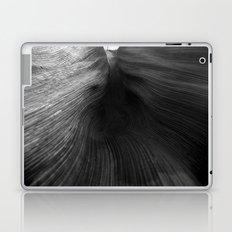 Palms 1.1 Laptop & iPad Skin
