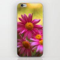 Anthemis 2632 iPhone & iPod Skin