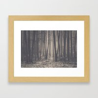 Into the depths of the forest Framed Art Print